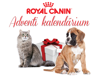 013_royalcanin_advent